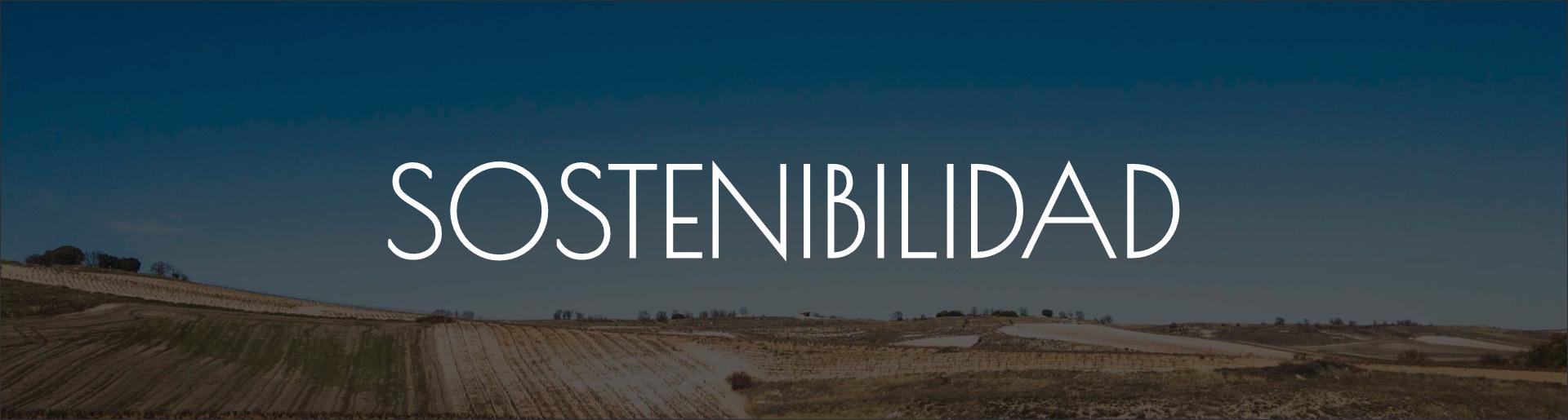 sostenibilidad_BEM
